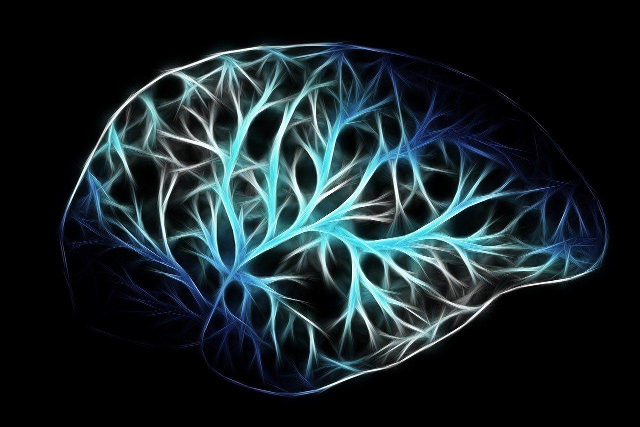 血圧200放置していたらついに脳出血(脳卒中)に!③